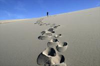 desert_steps